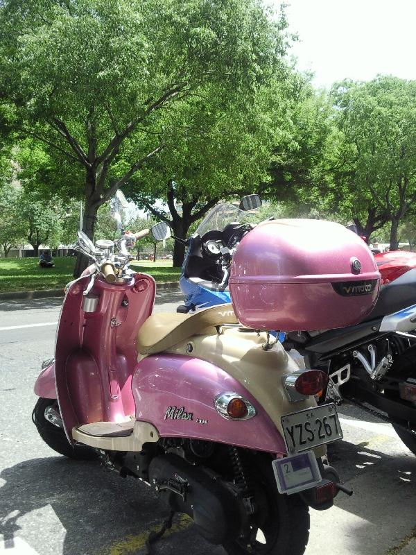Pink vespa,  Australia