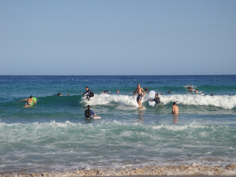 Photos of Bondi surfers, Sydney Australia