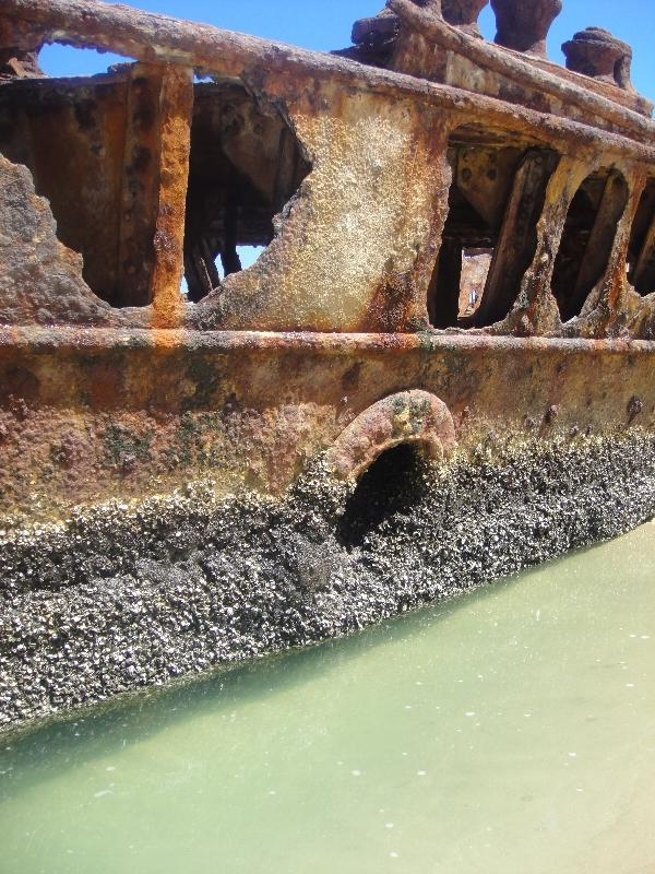 Moheno Shipwreck on Fraser Island, Australia