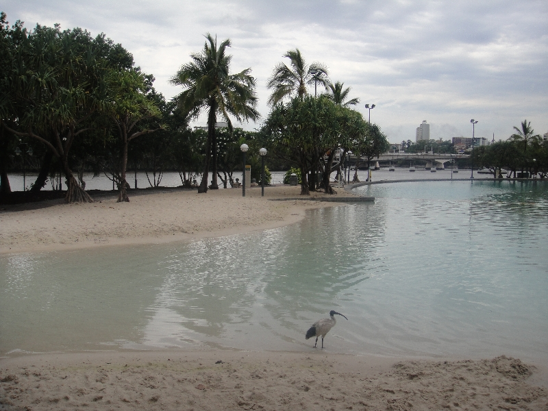 Brisbane Swimming Lagoon, Brisbane Australia