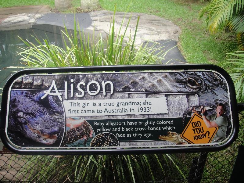 Croc St in Steve Irwins zoo, Beerwah Australia