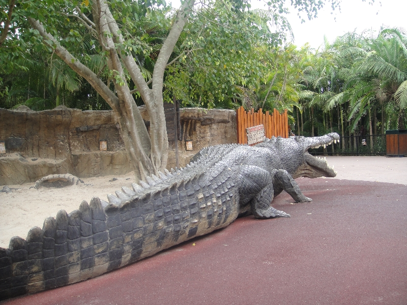 Reconstruction of the biggest crocodile ever!, Beerwah Australia