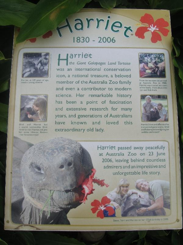 The Steve Irwin Australia Zoo in Beerwah, Queensland Vacation Picture
