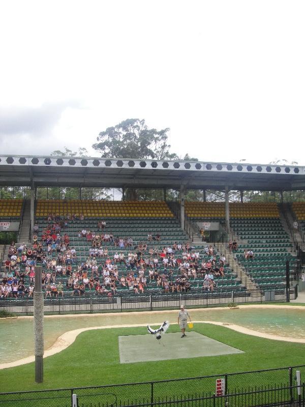 The 5000 seat Crocoseum, Beerwah Australia