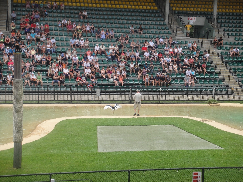 The Crocoseum at Australia Zoo, Australia
