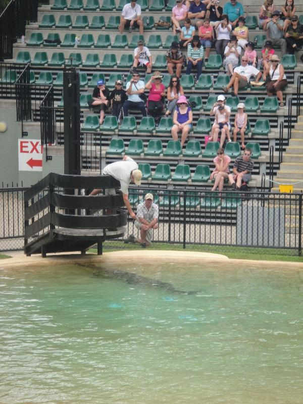 The Steve Irwin Australia Zoo in Beerwah, Queensland Diary