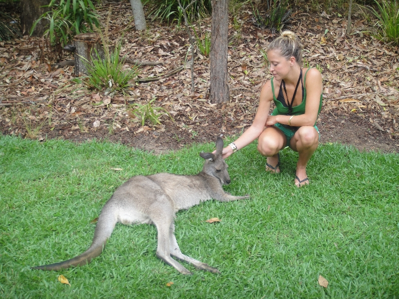 The Steve Irwin Australia Zoo in Beerwah, Queensland Travel Experience