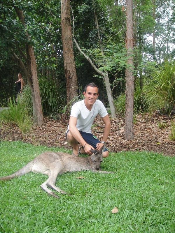 The Steve Irwin Australia Zoo in Beerwah, Queensland Trip Sharing