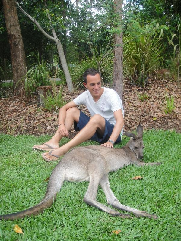 The Steve Irwin Australia Zoo in Beerwah, Queensland Review Picture
