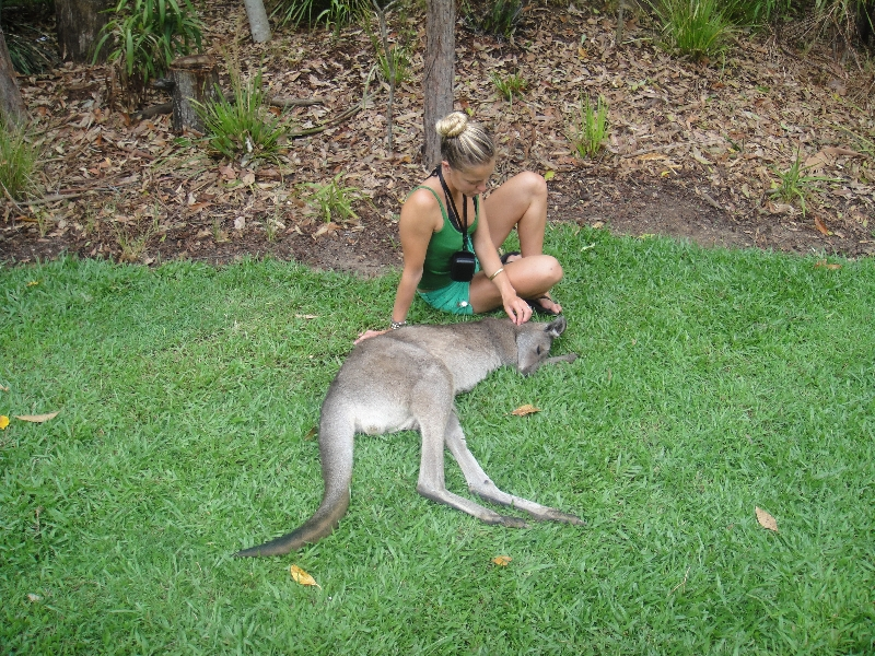 The Steve Irwin Australia Zoo in Beerwah, Queensland Picture gallery