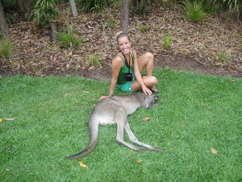 The Steve Irwin Australia Zoo in Beerwah, Queensland Diary Adventure