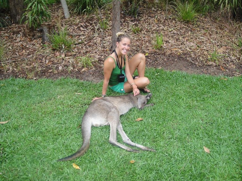 The Steve Irwin Australia Zoo in Beerwah, Queensland Vacation Tips