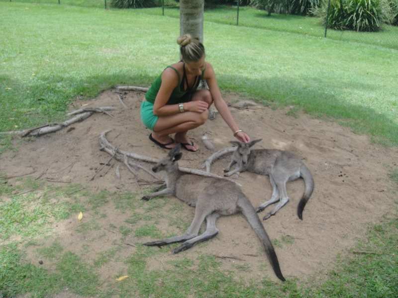 The Steve Irwin Australia Zoo in Beerwah, Queensland Trip
