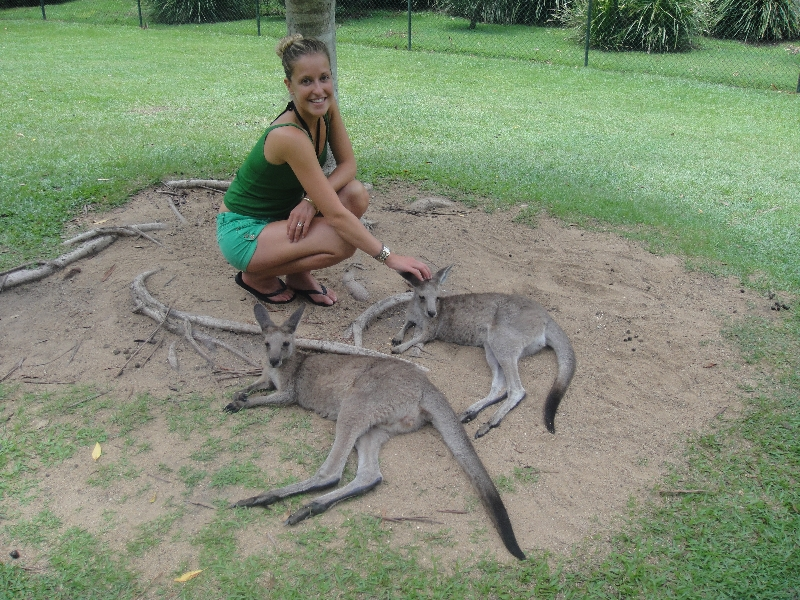 The Steve Irwin Australia Zoo in Beerwah, Queensland Travel Photo