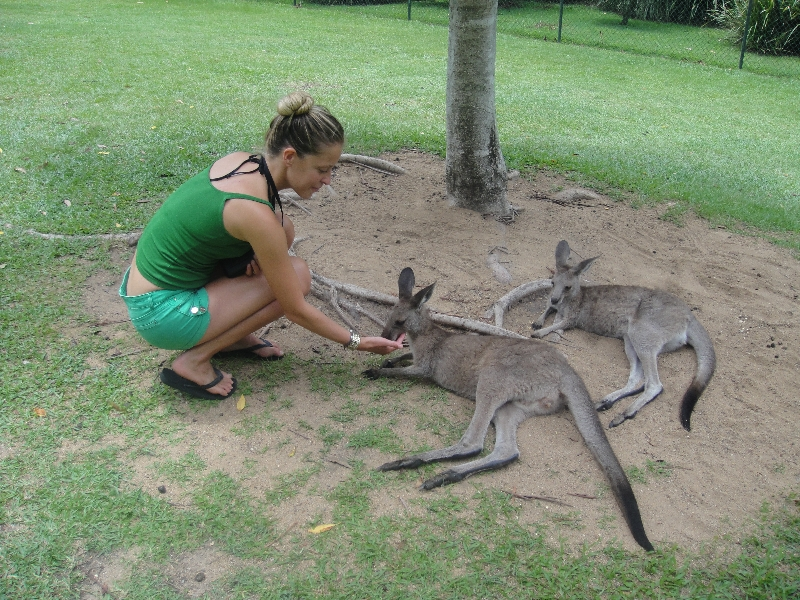 The Steve Irwin Australia Zoo in Beerwah, Queensland Review Gallery