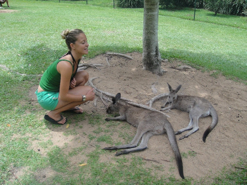 The Steve Irwin Australia Zoo in Beerwah, Queensland Holiday Sharing