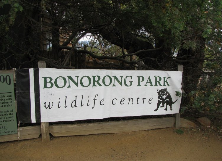 Bonorong Wildlife Conservation Park, Australia