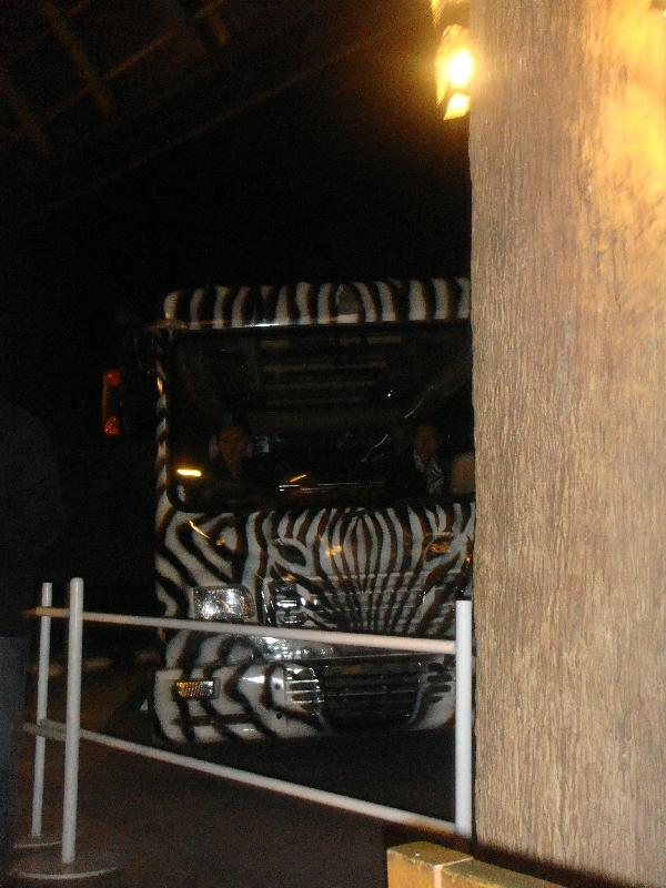 The Night Safari Shuttle in Chiang Mai, Thailand