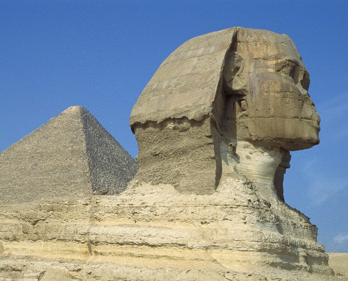 The Human head of the Sphinx in Giza, Cairo Egypt