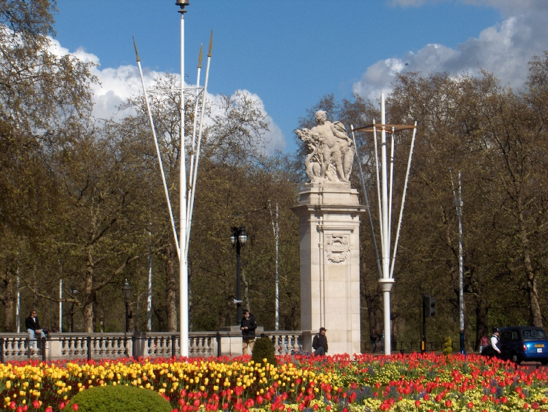 Tulip gardens around Buckingham Palace, United Kingdom