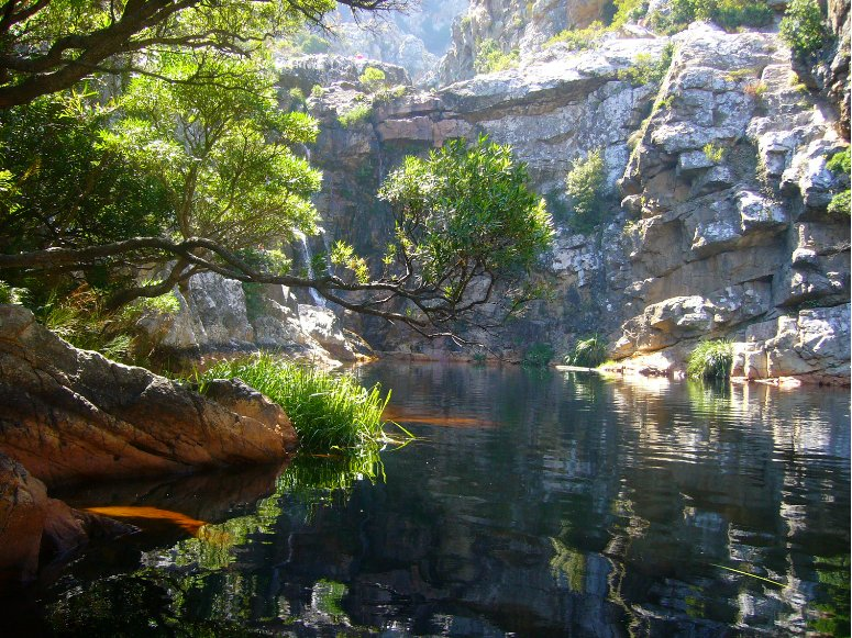 Cape Town South Africa Crystal Pool in Kogelberg, SA