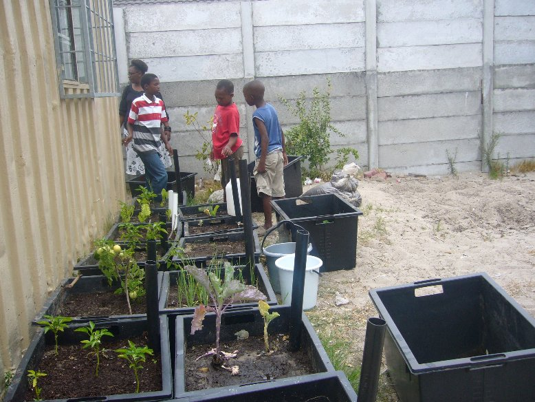 Gardening lessons in Nyanga, Cape Town, South Africa