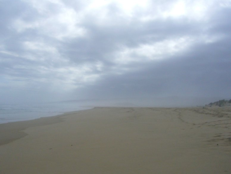 Sand dunes at Buffalo Bay Beach, South Africa