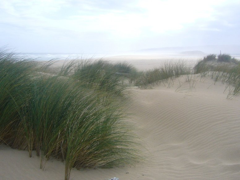 Pictures of the dunes in Buffalo, Knysna South Africa
