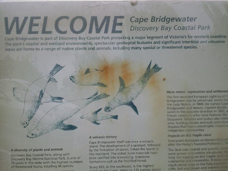 Discovery Bay Coastal Park, Cape Bridgewater Australia