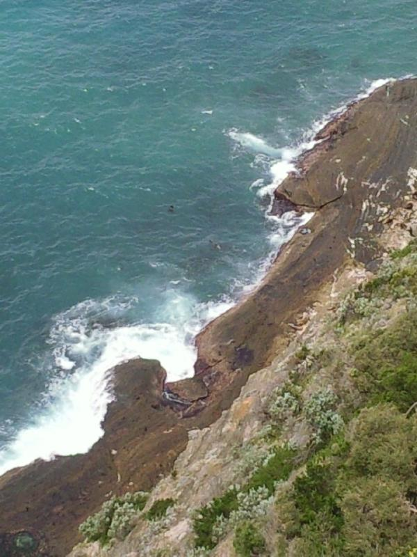 Amazing coastal cliffs in Cape Bridgewater, Australia