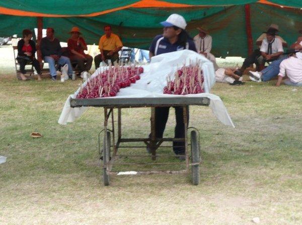 Gauchos community in Salta, Argentina, Argentina