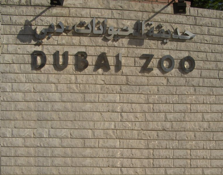 Dubai United Arab Emirates A visit to the Dubai Zoo