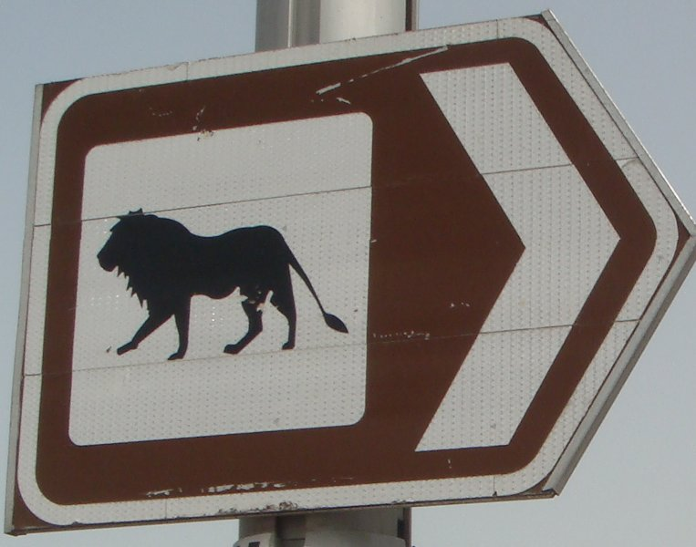 Taking a detour to the Dubai Zoo, United Arab Emirates