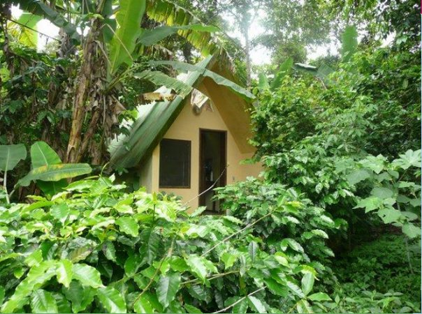 Our Jungle chalet in Ubajara, Brazil