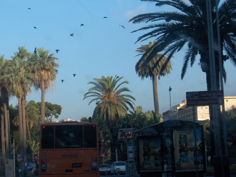 Bus in the centre of Naples, Italy