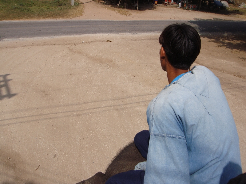 Elephant rider in Kanchanaburi, Thailand