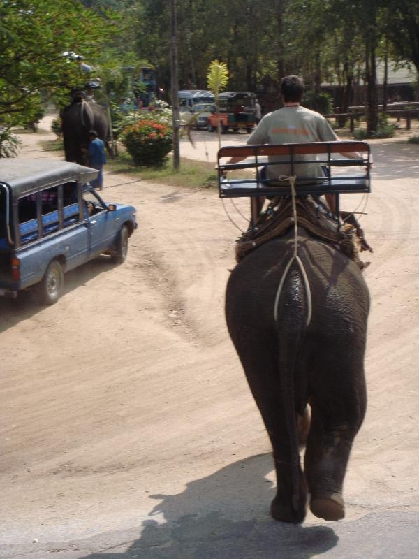Elephant rides in Kanchanaburi, Thailand