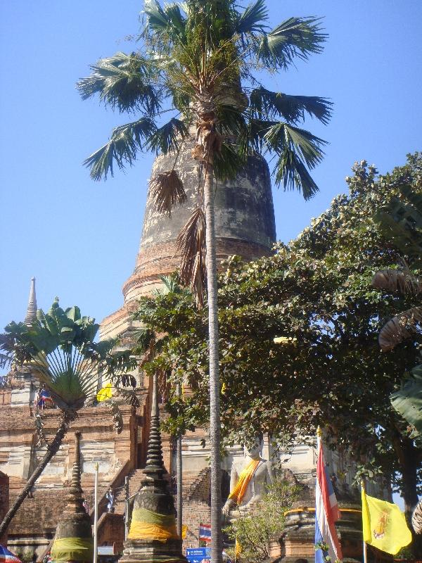 The tallest chedi of Ayutthaya, Thailand