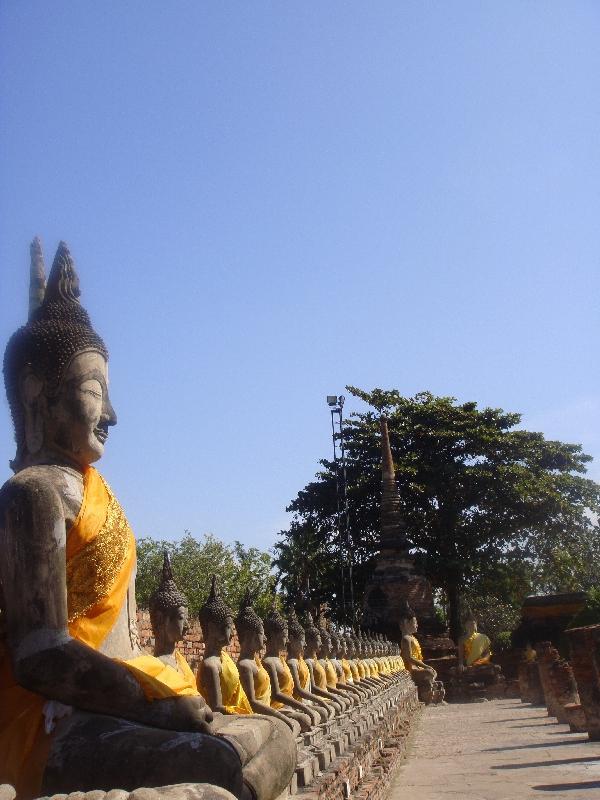 Buddha statues lined around the park, Ayutthaya Thailand