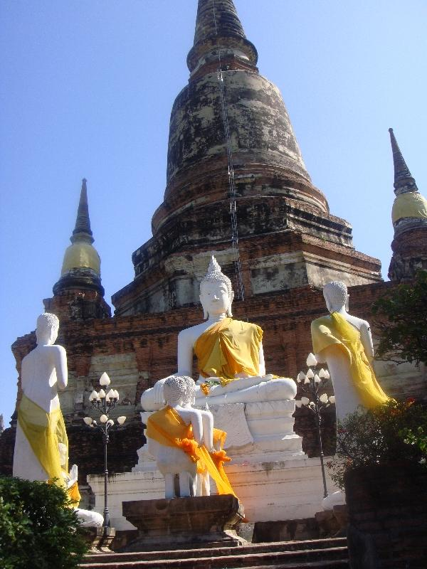 The numerous Buddha statues in Ayutthaya, Thailand