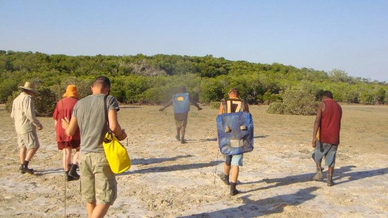 Moving into the mangroves Cape Leveque