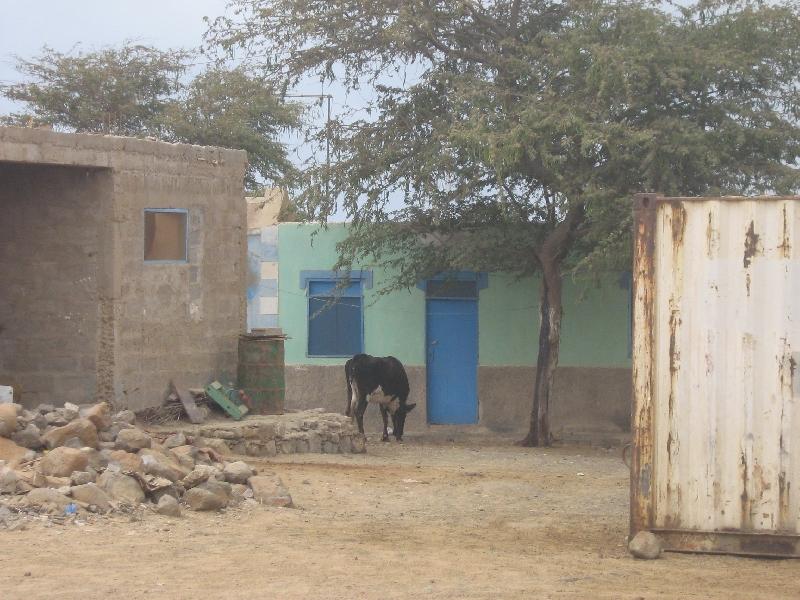 The Houses of Espargos, Sal, Cape Verde
