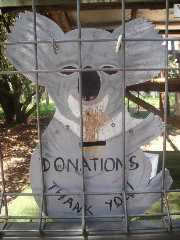 Donate money to the koala hospital, Australia