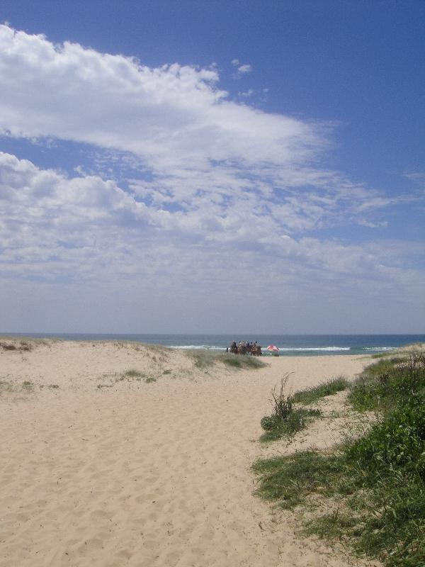 Beautiful Ozzi beach in Port Maquarie, Australia