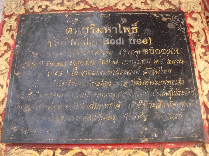 Sign at the Sri Maha Bodi Tree, Chiang Mai Thailand