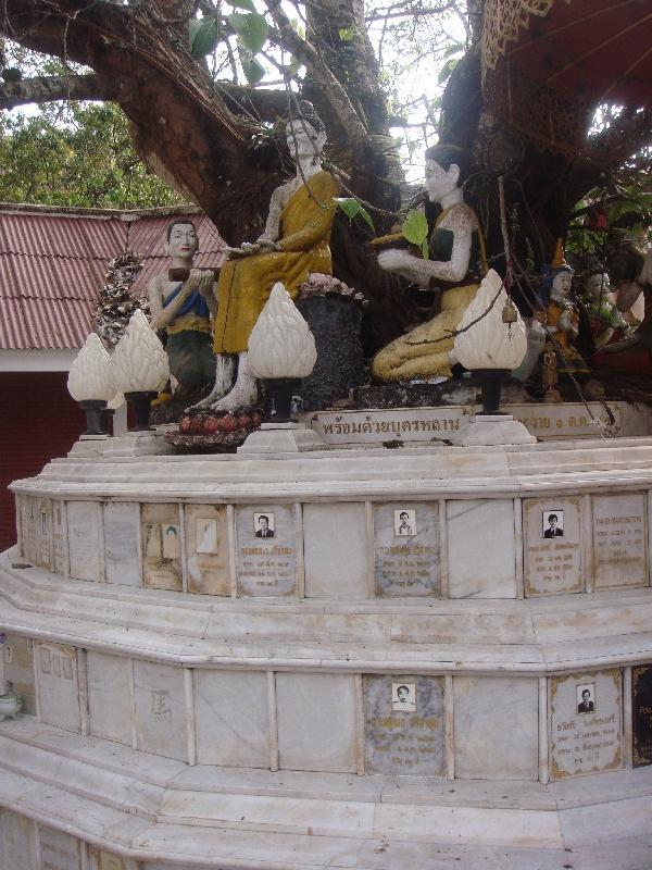 Sri Maha Bodi Tree in Chiang Mai, Thailand
