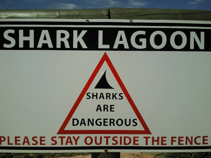 Shark Lagoon, Australia