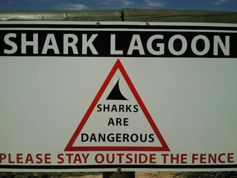 Shark Lagoon, Denham Australia