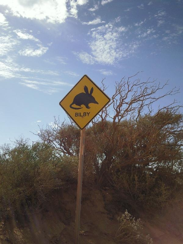 Look out for bilby, Denham Australia