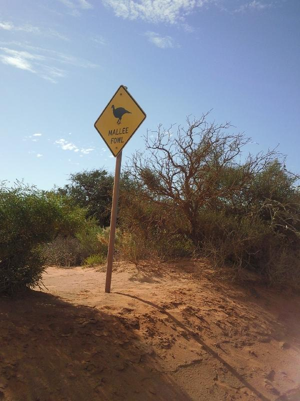 Cool Australian road signs, Denham Australia